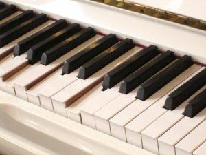 鍵盤 ピアノ 和音