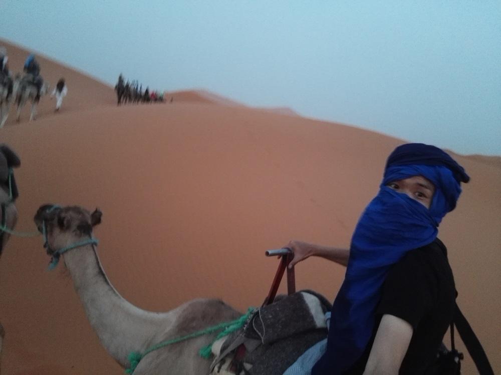リス世界旅行ラクダ砂漠